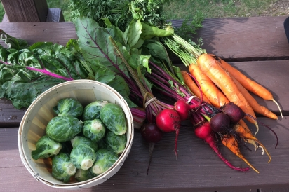 Carrots, beets and Brussels sprouts