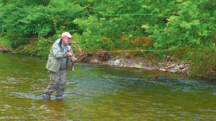Trout fishing in Western New York tributary stream